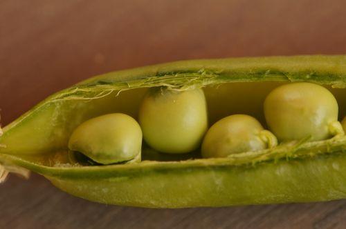peas pea pod frisch