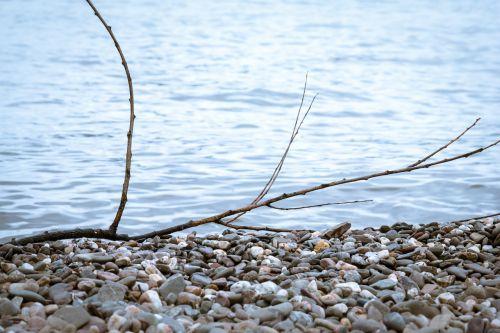 pebble branch beach