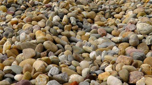 pebbles about plump