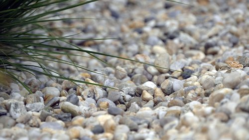 pebbles  grass  nature