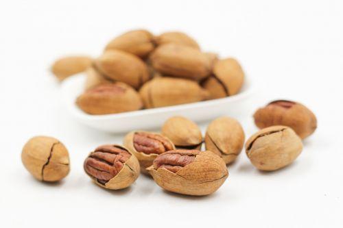 pecans nut walnuts