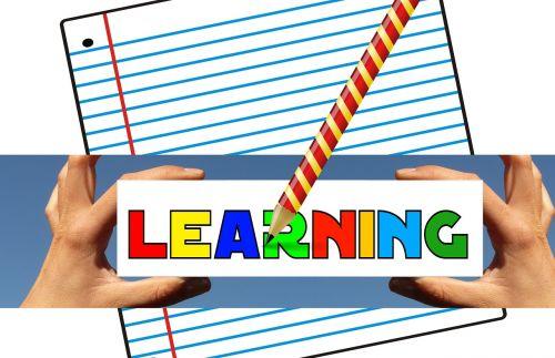 pedagogy education school