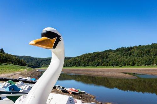 pedal boat  boat  lake