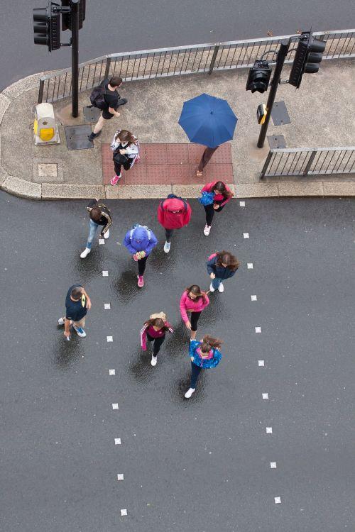 pedestrian pedestrian crossing traffic lights