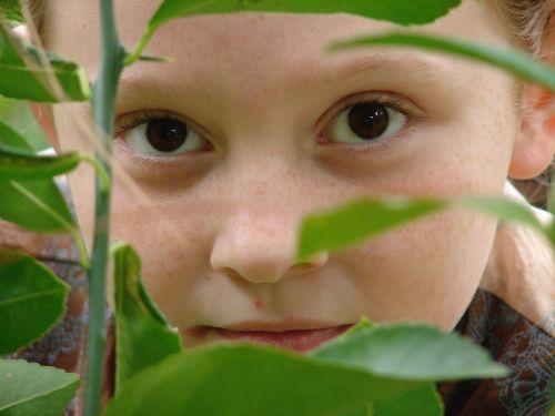 mergaitė,veidas,niekšingas,lapai,žalias,rudos akys,lauke,jaunas,smalsumas,paslaptis,peeking,tyrinėti,įdomu,atrodo,flora,žvilgtelėti,gamta,atradimas,Paieška,vaikystę,žiūrėti,tyrinėti,ieškoti