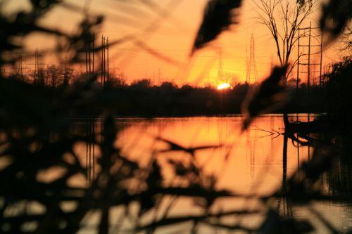 Peeking Sunset