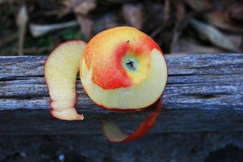 Peeled Apple 2
