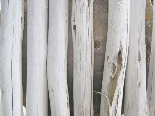 Peeping Through Pole Fence