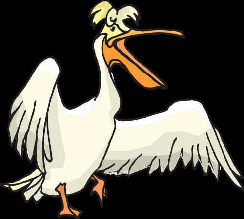 pelican seabird pouch