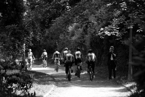 Platoon Of Cyclists