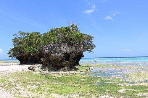 pemba island  holiday  vacation
