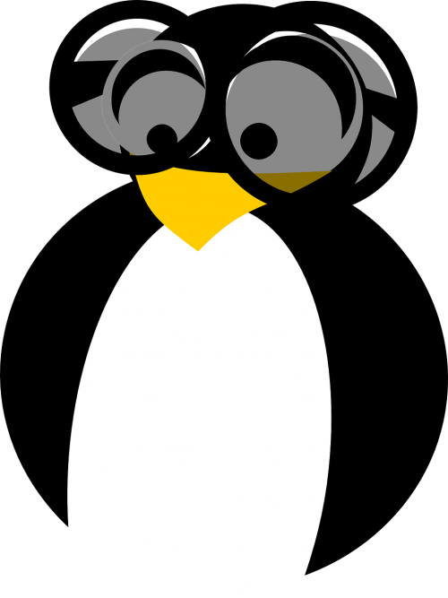 penguin brainy clever