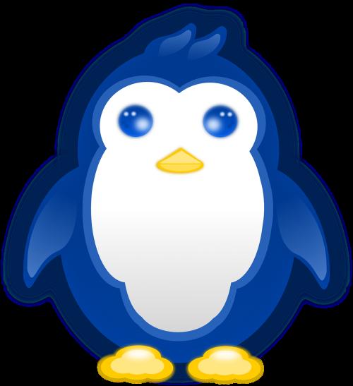 penguin baby blue