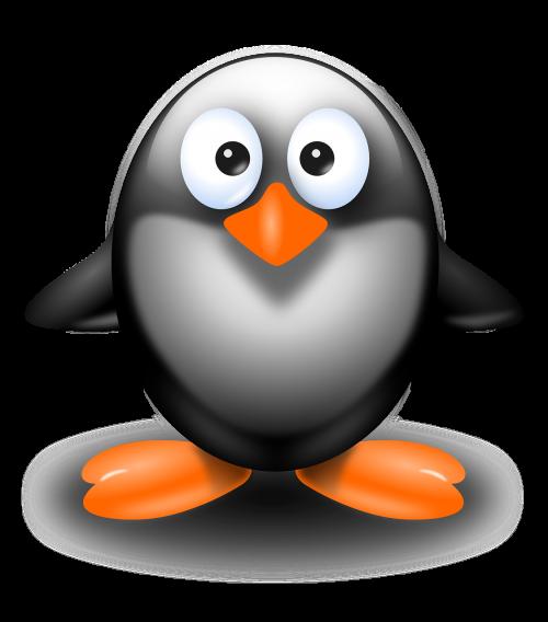 penguin bird standing