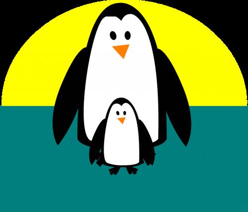 penguin adult cute
