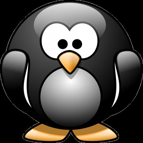 penguin birds aquatic