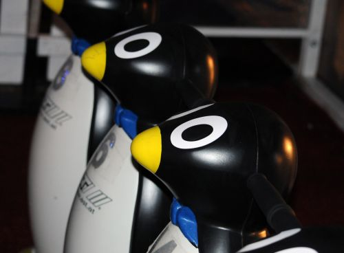 Penguin Ice Skating Support