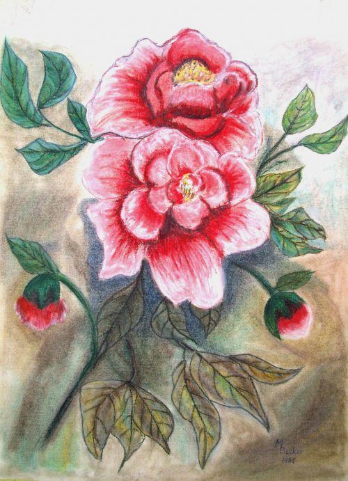 peony flowers painting