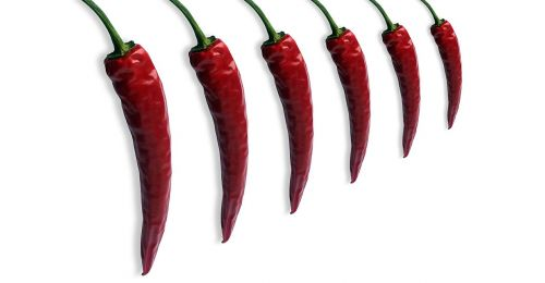 pepper chili chilli pepper