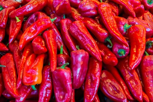 pepperoni paprika red