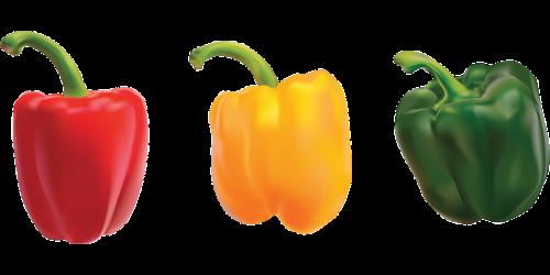 peppers bell pepper sweet pepper