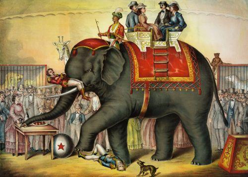 Iliustracijos, clip & nbsp, menas, iliustracija, grafika, vintage, Senovinis, menas, dramblys, atlikti, spektaklis, gyvūnai, laukiniai, cirkas, pramogos, poilsis, laisvalaikis, atlikti dramblys