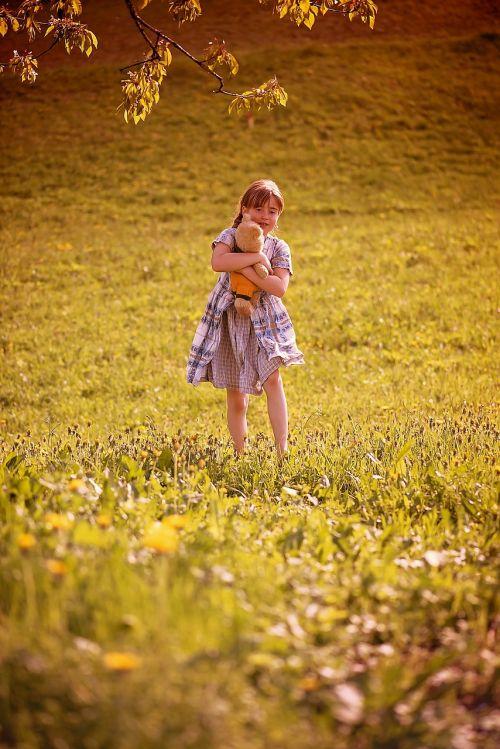 žmogus žmogus, vaikas, mergaitė, Teddy, meškiukas, pieva, gamta, out, šalies gyvenimas