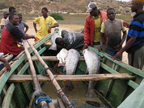 pescadores angola men
