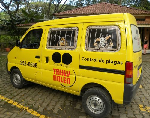 pest control mosquitoes insect