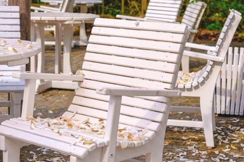 petals  chair  garden