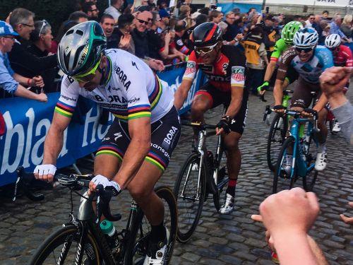 peter sagan professional cyclist racing