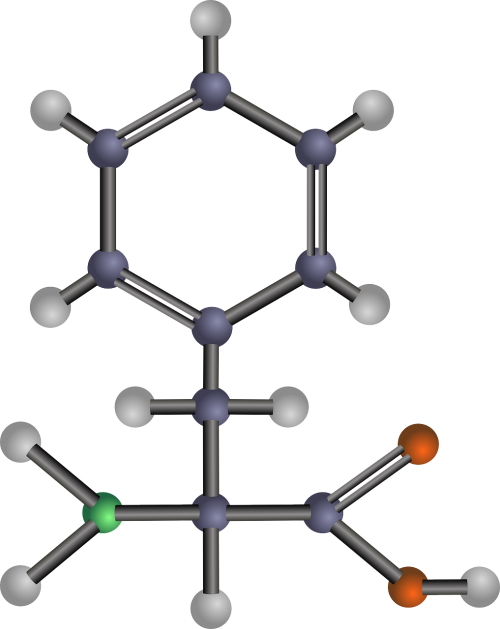 phenylalanine chemistry chemical structure