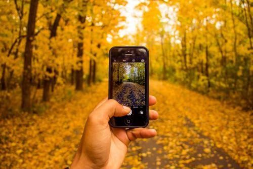 phone taking photos photography