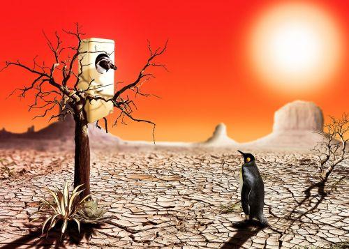 photo montage penguin desert