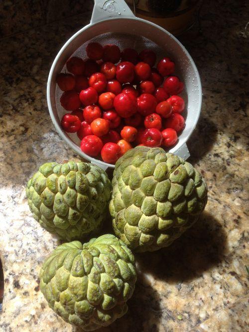 įrašyti,kūgis,Acerola,vaisiai