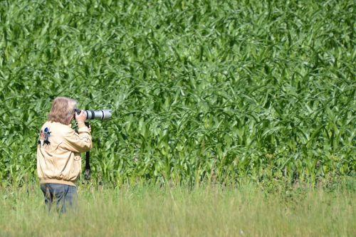 photographer paparazzi photograph