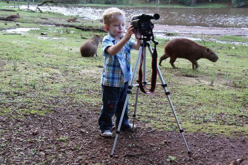 photographer swamp capybara