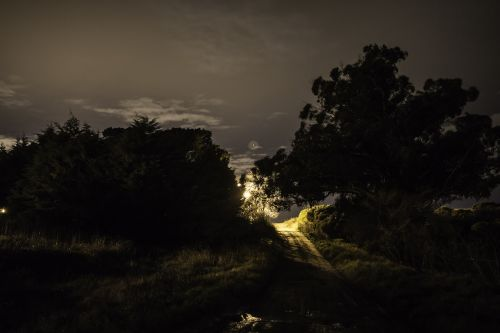 photography night parents saw mar del plata
