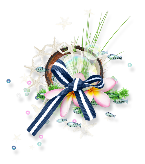 photoshop  scrapbooking  ornament