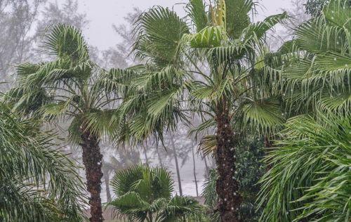 phuket thailand monsoon