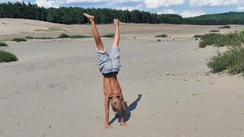 physical activity  exercise  training