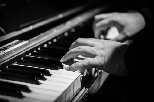 piano hands pianist