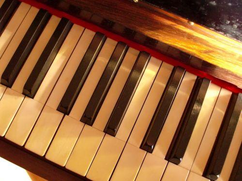 piano ivory keys