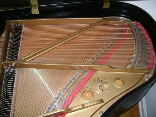 piano strings interior