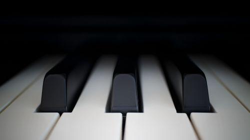piano ivory ebony
