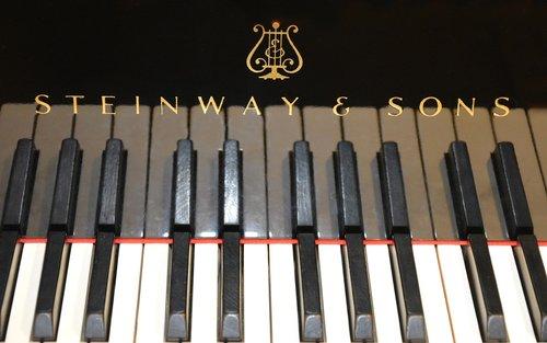 piano  wing  concert flights