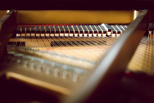 piano  key  inside