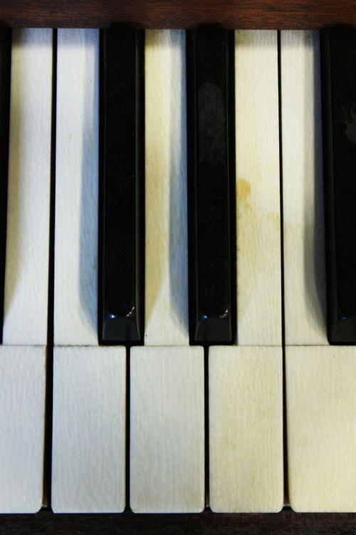 piano piano keys play the piano