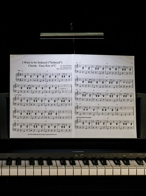 piano lesson music keyboard