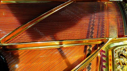 piano strings strings piano
